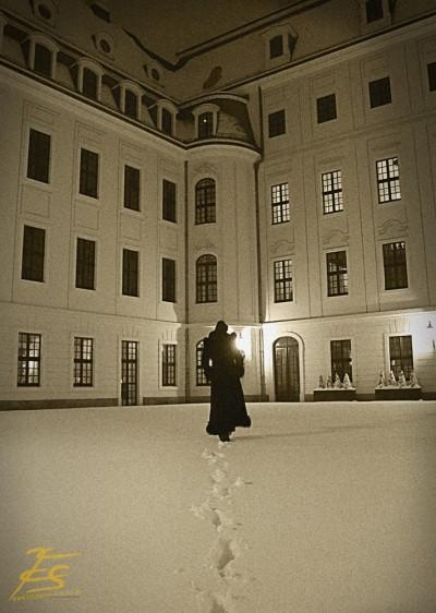aufgenommen im Taschenbergpalais Dresden.